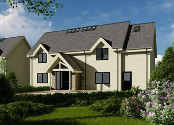 Thumbnail 4 bed detached house for sale in Teinside Chase & Teinside Paddock, Teinside Hawick