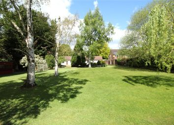 Thumbnail 5 bedroom detached bungalow for sale in Ruxbury Road, Chertsey, Surrey