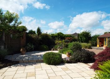 Thumbnail 3 bed bungalow to rent in The Beeches, Upton-Upon-Severn, Worcester