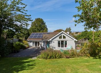 Thumbnail 3 bed detached bungalow to rent in Trenance, St. Issey, Wadebridge