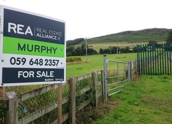 Thumbnail Property for sale in Sruhaun, Baltinglass, Wicklow