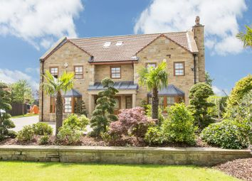 Thumbnail 6 bed detached house for sale in Merrybent, Darlington