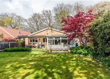 Thumbnail 3 bed detached bungalow for sale in Coppice Avenue, Great Shelford, Cambridge