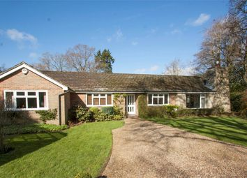 Thumbnail 4 bed detached bungalow for sale in Burnside, Fleet