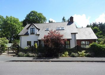 Thumbnail 4 bed detached bungalow for sale in Waungiach, Llechryd, Cardigan