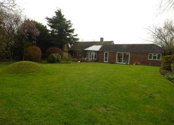 Thumbnail 3 bed bungalow for sale in Elmsett, Ipswich, Suffolk