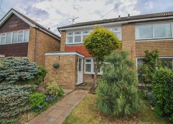 Thumbnail 4 bed semi-detached house for sale in The Drive, Harlow, Essex