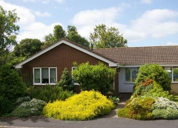 Thumbnail 3 bed bungalow for sale in East Budleigh, Budleigh Salterton, Devon