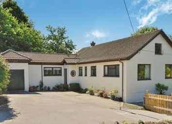 Thumbnail 4 bedroom bungalow for sale in St. Agnes, Cornwall