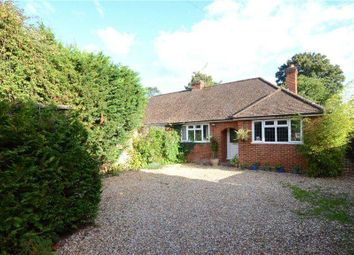 Thumbnail 4 bedroom bungalow for sale in Meadow Way, Bracknell