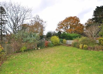 Thumbnail 2 bed detached bungalow for sale in Maynards Green, Heathfield