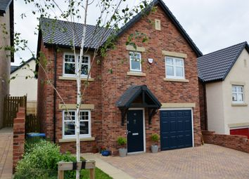 Thumbnail 4 bed detached house to rent in Seagent Place, Shotley Bridge, Co Durham