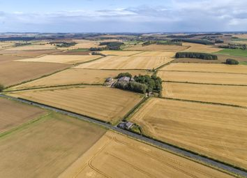 Thumbnail Land for sale in Tarves, Ellon, Aberdeenshire