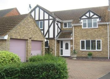 Thumbnail 4 bedroom detached house to rent in Brands Close, Ramsey, Huntingdon