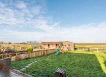 3 bed equestrian property for sale in Mill Road, Murrow, Wisbech PE13