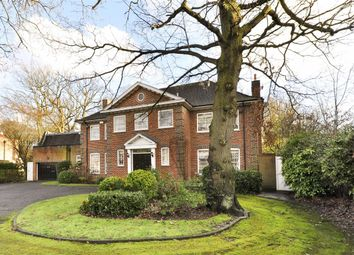 Thumbnail 5 bed detached house to rent in Winnington Road, London