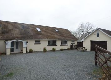 Thumbnail 4 bed detached bungalow to rent in Wiston, Haverfordwest