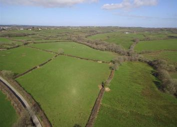 Thumbnail Land for sale in Chasty, Holsworthy, Devon