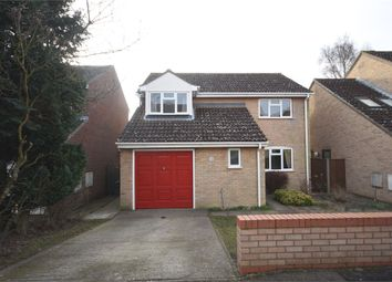 Thumbnail 4 bedroom detached house for sale in Lombardy Road, Sudbury, Suffolk