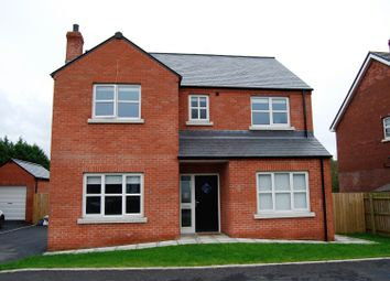 Thumbnail 4 bed detached house for sale in The Hollows, Lurgan