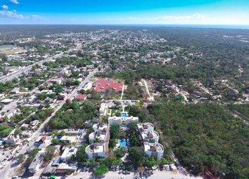 Thumbnail Land for sale in La Veleta, Tulum, Mexico