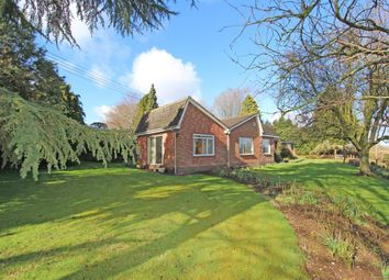 Thumbnail 4 bed detached bungalow for sale in Five Bridges, Cullompton