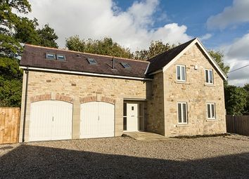 Thumbnail 4 bed detached house to rent in Riverside House, Broomhaugh, Riding Mill, Northumberland