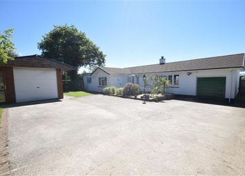 Thumbnail 4 bed detached bungalow for sale in Dowland, Winkleigh