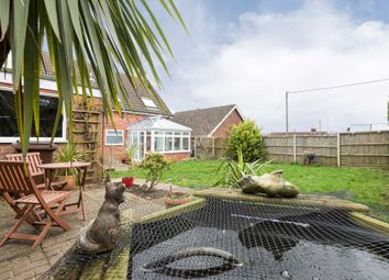 Thumbnail 4 bed detached house for sale in Hawthorn Road, New Costessey, Norwich