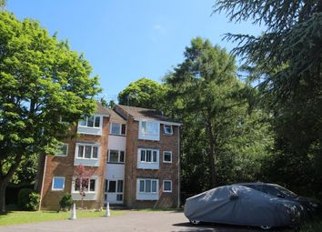 Thumbnail Studio for sale in Holly Drive, Waterlooville, Hampshire