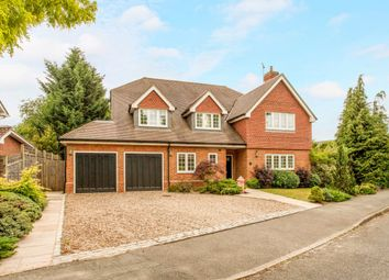 Thumbnail 6 bed detached house to rent in The Paddocks, Weybridge