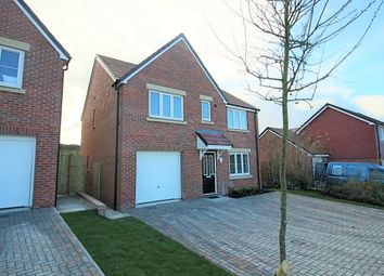 Thumbnail 5 bed detached house to rent in Saddle Way, Picket Twenty, Andover