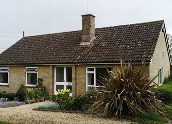 Thumbnail 3 bed detached bungalow to rent in Church Hill, Marnhull, Sturminster Newton