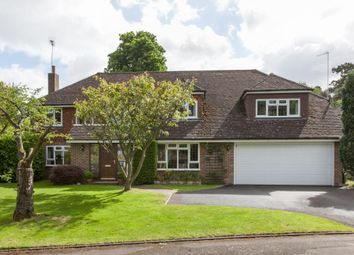 Thumbnail 6 bed detached house to rent in Ashcroft Park, Cobham