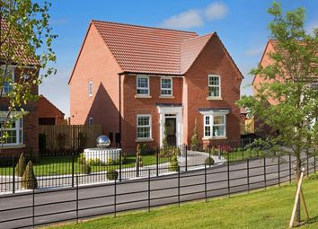 "Thumbnail 4 bedroom detached house for sale in ""Holden"" at Tranby Park, Jenny Brough Lane, Hessle"