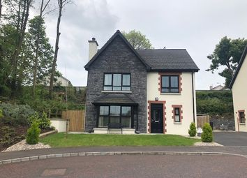 Thumbnail 3 bedroom detached house for sale in 3 Mill Meadows, Bessbrook
