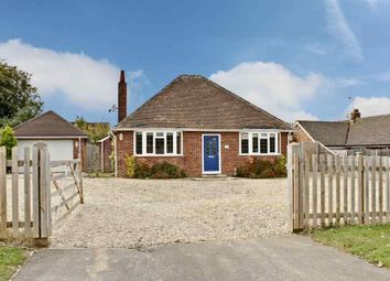Thumbnail 3 bed bungalow to rent in Byfleet Avenue, Old Basing, Basingstoke