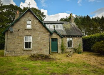 Thumbnail 4 bed detached house to rent in Carsegray, Forfar, Angus