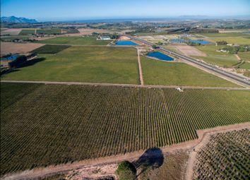 Thumbnail Farm for sale in R44, Stellenbosch, Cape Winelands, Western Cape, South Africa