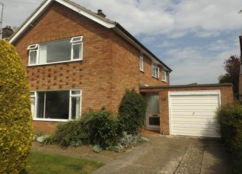 Thumbnail 3 bedroom detached house to rent in Henley Road, Ipswich