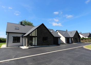 Thumbnail 3 bed detached house for sale in Lampeter Road, Tregaron