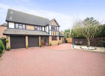 Thumbnail 5 bed detached house for sale in Yew Tree Close, Hatfield Peverel, Chelmsford