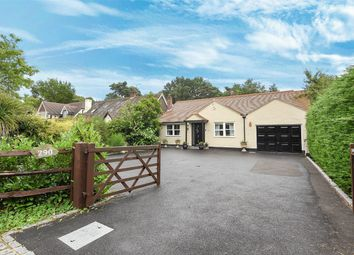 Thumbnail 3 bedroom detached bungalow for sale in Nine Mile Ride, Finchampstead