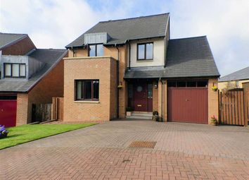 Thumbnail 4 bedroom detached house for sale in Ballantrae, Stewartfield, East Kilbride