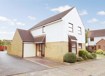Thumbnail 4 bed detached house for sale in Bailey Dale, Stanway, Colchester