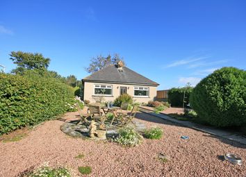Thumbnail 2 bed detached bungalow for sale in Tollhouse, Cullen
