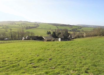 Thumbnail Detached house for sale in Yarn Barton, Fleet Street, Beaminster