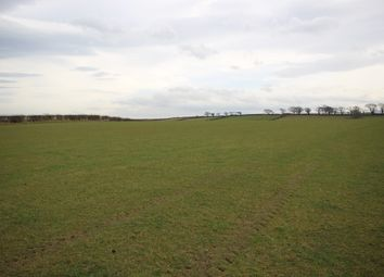 Thumbnail Land for sale in Land At Mealrigg, Westnewton, Wigton