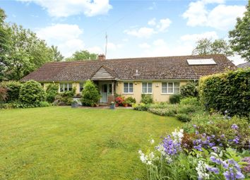 Thumbnail 4 bed detached bungalow for sale in East Chisenbury, Pewsey, Wiltshire