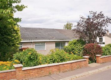 Thumbnail 3 bed semi-detached bungalow for sale in Sclandersburn Road, Denny, Stirlingshire